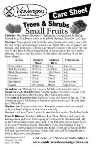 Fruit Trees Small copy
