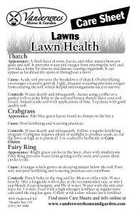 Lawn Health copy