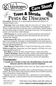 Pests & Diseases copy