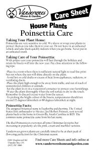 Poinsettia Care Guide copy