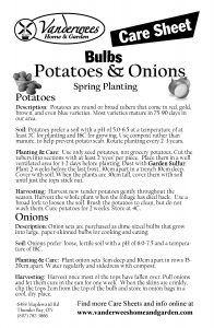 Potatoes & Onions copy