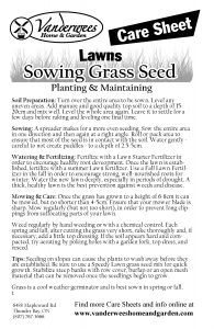 Sowing Grass Seed copy