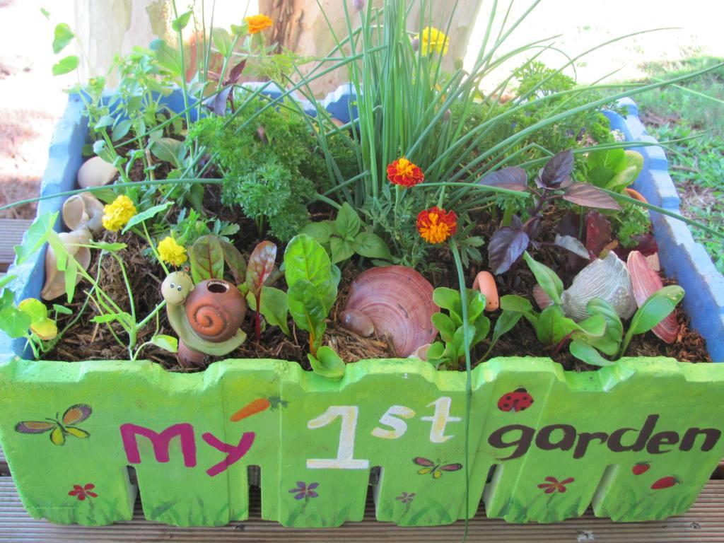 Getting kids into gardening vanderwees home garden Flowers to plant in vegetable garden